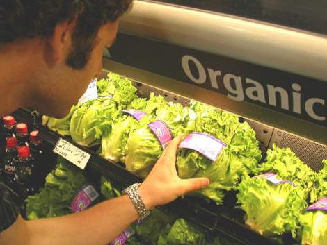 organiccabbages.PNG